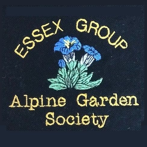 Essex Alpine Garden Society